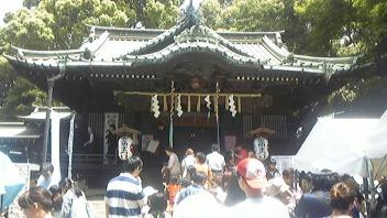 金魚まつり(<br />  代々木八幡宮)