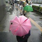 雨の日の楽しみ